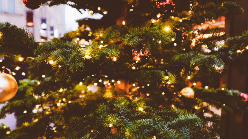 Un albero di Natale.Padre Gonçalves ci dice come passare dall'incontro mancato all'incontro reale durante le feste.